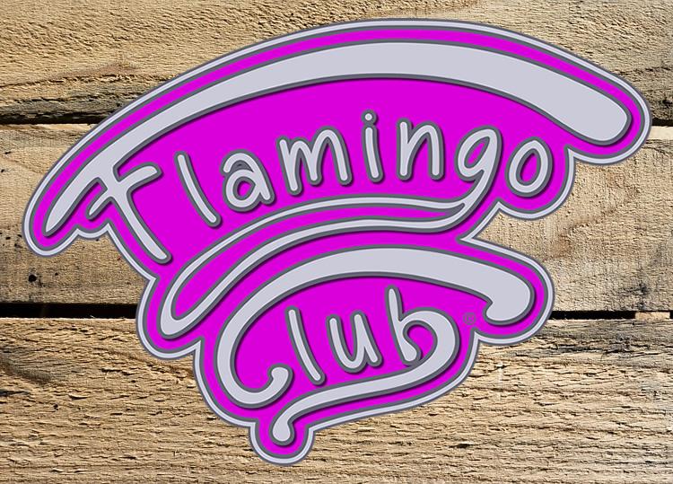 Sfeerbeeld Flamingo Club - Zewopa vzw